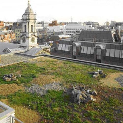 Video of Green Roofing Bio-diverse Full System 100m2 Kit - Skygarden
